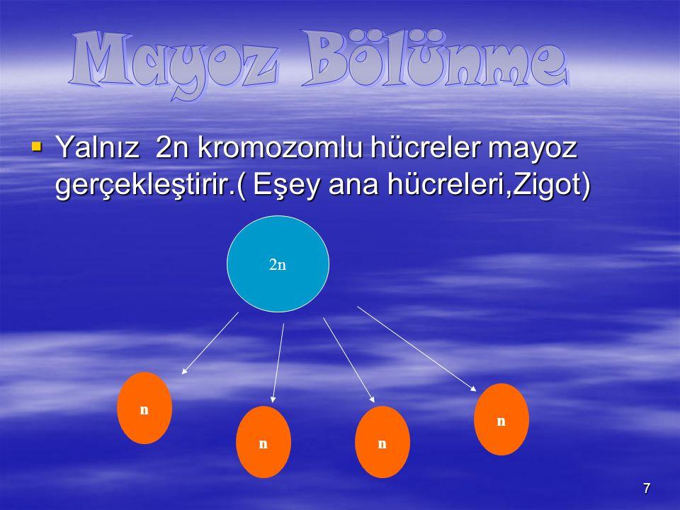 8 Mayoz Bölünme Sonucu oluşan Hücreler Sperm HücresiYumurta HücresiSpor hücresiPolen Hücresi