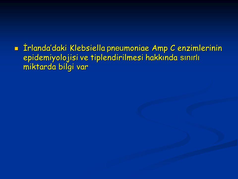 İrlanda'daki Klebsiella p n eu moniae Amp C enzimlerinin epidemiyolojisi ve tiplendirilmesi hakkında sınırlı miktarda bilgi var İrlanda'daki Klebsiella p n eu moniae Amp C enzimlerinin epidemiyolojisi ve tiplendirilmesi hakkında sınırlı miktarda bilgi var