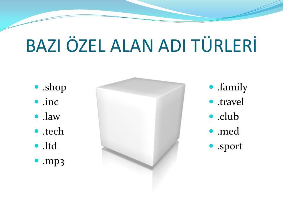 BAZI ÖZEL ALAN ADI TÜRLERİ.shop.inc.law.tech.ltd.mp3.family.travel.club.med.sport