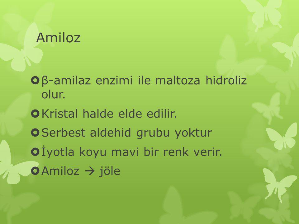 Amiloz  β-amilaz enzimi ile maltoza hidroliz olur.  Kristal halde elde edilir.  Serbest aldehid grubu yoktur  İyotla koyu mavi bir renk verir.  A