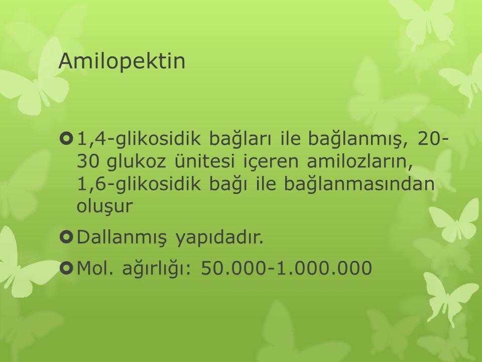 Amilopektin  1,4-glikosidik bağları ile bağlanmış, 20- 30 glukoz ünitesi içeren amilozların, 1,6-glikosidik bağı ile bağlanmasından oluşur  Dallanmış yapıdadır.