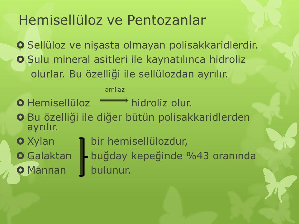 Hemisellüloz ve Pentozanlar  Sellüloz ve nişasta olmayan polisakkaridlerdir.  Sulu mineral asitleri ile kaynatılınca hidroliz olurlar. Bu özelliği i
