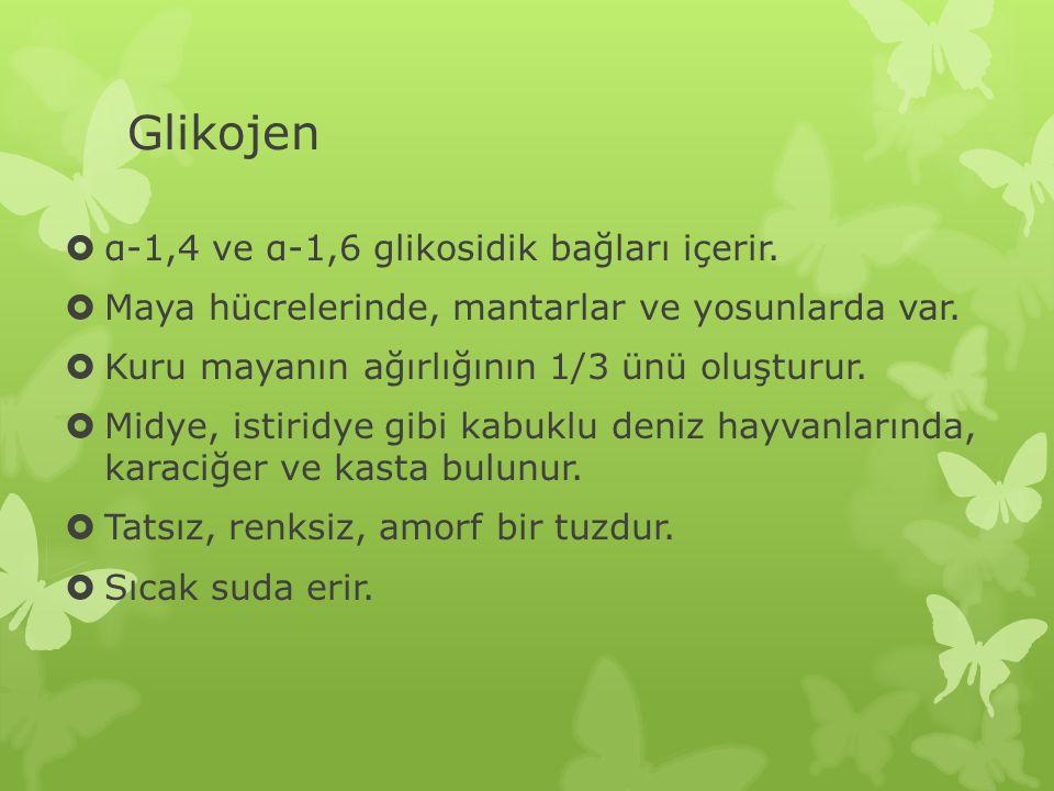 Glikojen  α-1,4 ve α-1,6 glikosidik bağları içerir.  Maya hücrelerinde, mantarlar ve yosunlarda var.  Kuru mayanın ağırlığının 1/3 ünü oluşturur. 