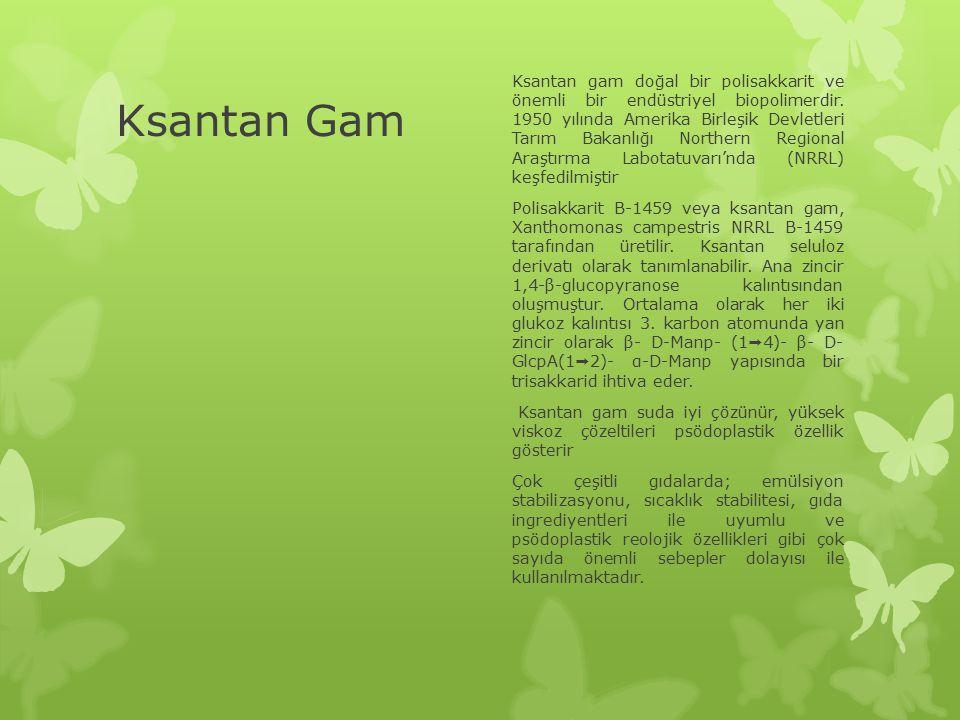 Ksantan Gam Ksantan gam doğal bir polisakkarit ve önemli bir endüstriyel biopolimerdir. 1950 yılında Amerika Birleşik Devletleri Tarım Bakanlığı North