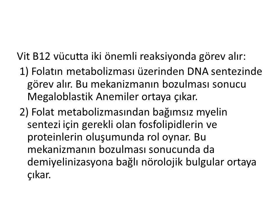 Vit B12 vücutta iki önemli reaksiyonda görev alır: 1) Folatın metabolizması üzerinden DNA sentezinde görev alır. Bu mekanizmanın bozulması sonucu Mega