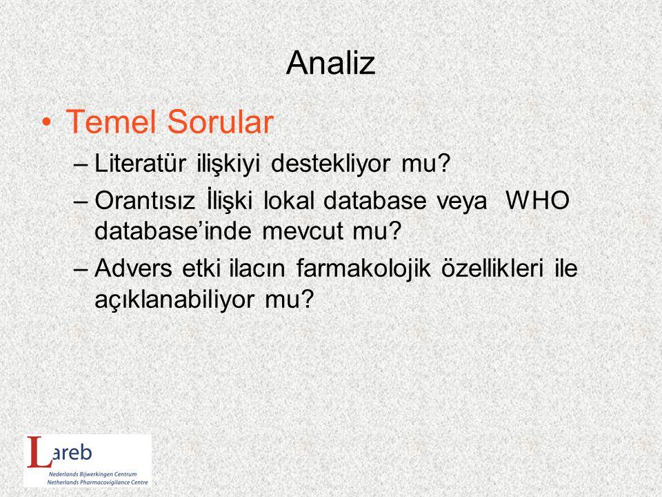 Analiz Temel Sorular –Literatür ilişkiyi destekliyor mu.