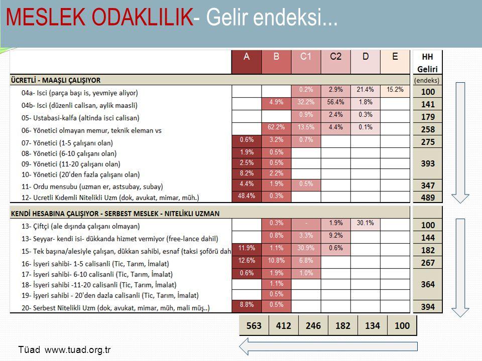 MESLEK ODAKLILIK- Gelir endeksi... Tüad www.tuad.org.tr