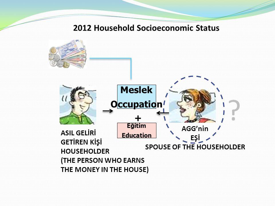 ? 2012 Household Socioeconomic Status AGG'nin EŞİ SPOUSE OF THE HOUSEHOLDER ASIL GELİRİ GETİREN KİŞİ HOUSEHOLDER (THE PERSON WHO EARNS THE MONEY IN THE HOUSE) Meslek Eğitim Education + Meslek Occupation