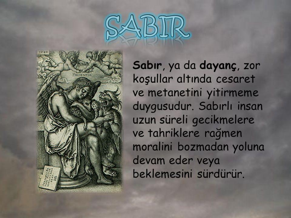 Türkçedeki sabır kelimesi Arapçadaki ( صْبِرْ sabr) kelimesinden gelmektedir.