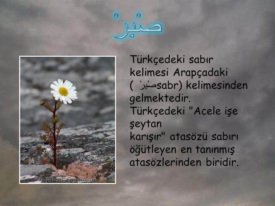 Türkçedeki sabır kelimesi Arapçadaki ( صْبِرْ sabr) kelimesinden gelmektedir. Türkçedeki