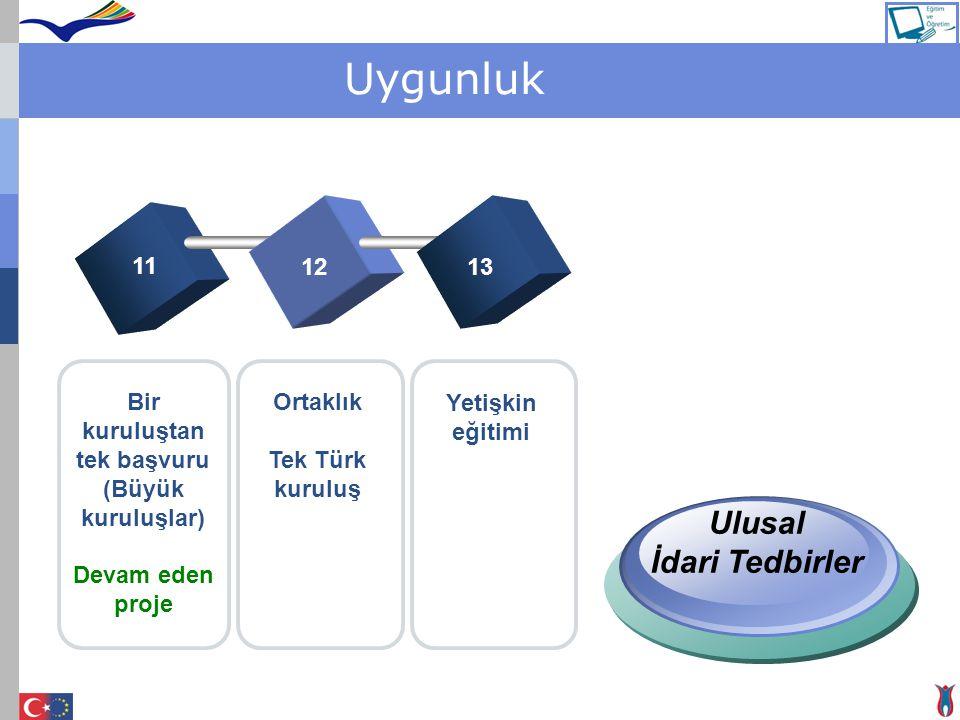 Uygunluk 11 1213 Bir kuruluştan tek başvuru (Büyük kuruluşlar) Devam eden proje Ortaklık Tek Türk kuruluş Yetişkin eğitimi Ulusal İdari Tedbirler
