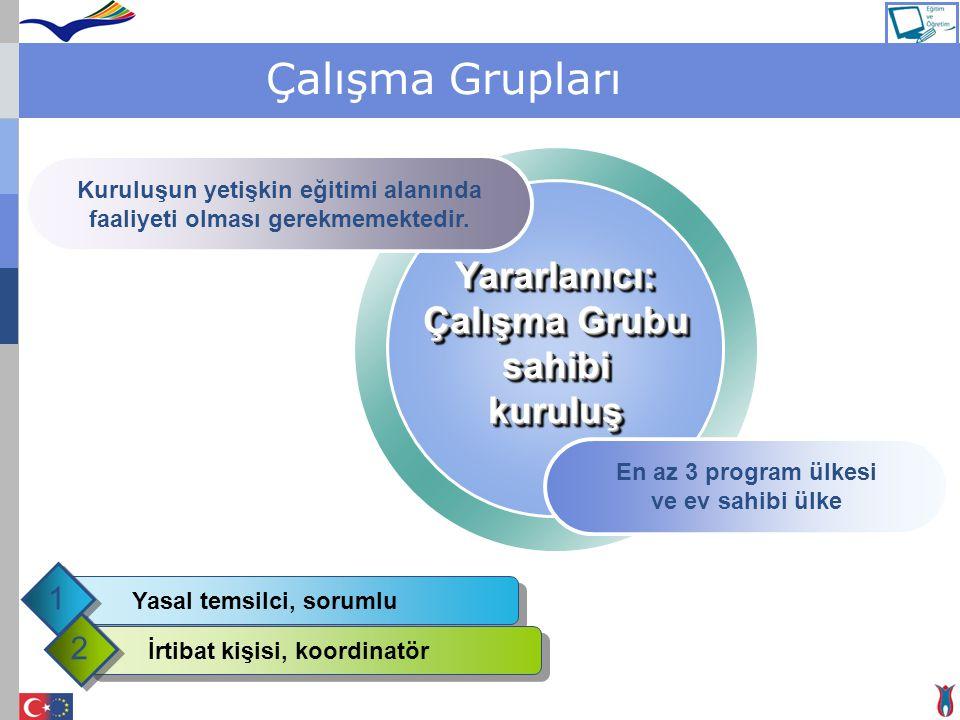 Çalışma Grupları En az 3 program ülkesi ve ev sahibi ülke Yararlanıcı: Çalışma Grubu sahibikuruluşYararlanıcı: sahibikuruluş Kuruluşun yetişkin eğitim