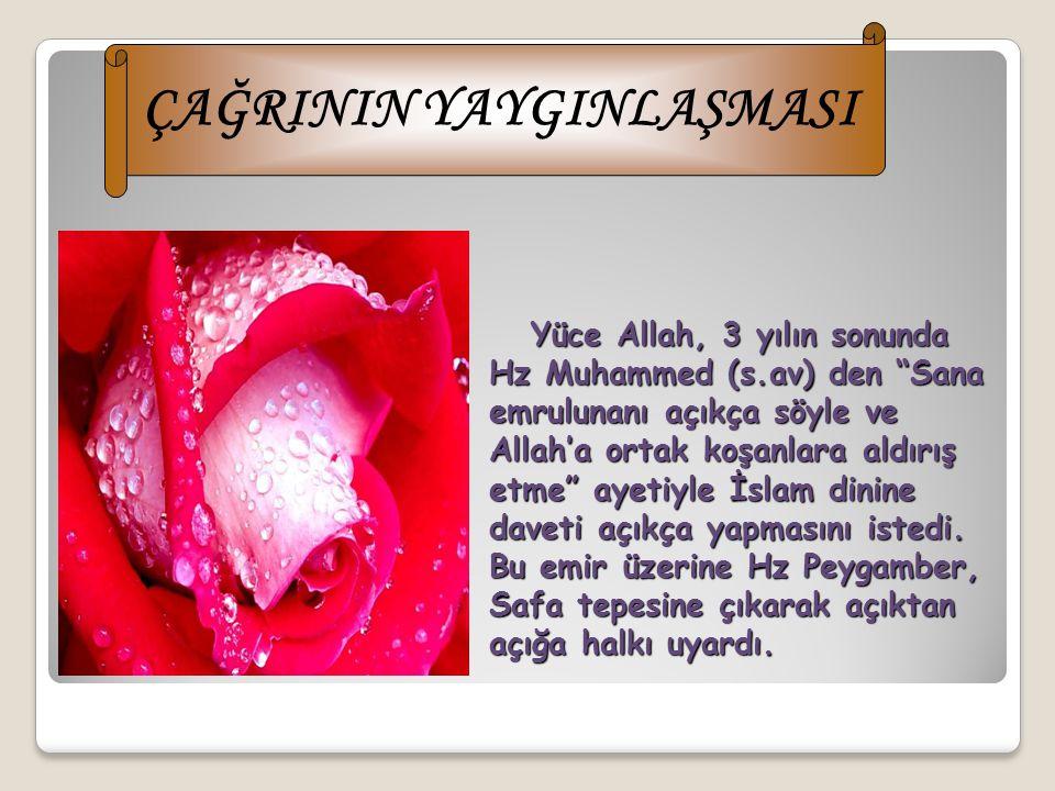 Ey amca! Git onlara söyle, Allah'a yemin ederim ki ben bu davadan güneşi sağ elime ayı da sol elime koysalar vazgeçmem. Allah'ın dinini zafere ulaştır