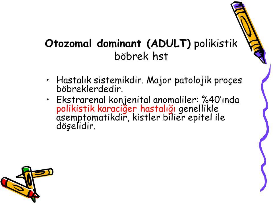 Otozomal dominant (ADULT) polikistik böbrek hst Hastalık sistemikdir.