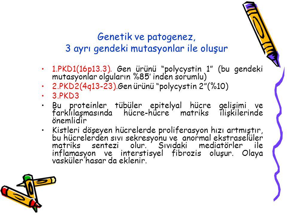 Genetik ve patogenez, 3 ayrı gendeki mutasyonlar ile oluşur 1.PKD1(16p13.3).