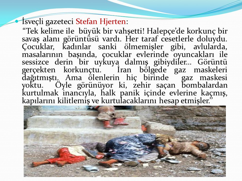 İsveçli gazeteci Stefan Hjerten: Tek kelime ile büyük bir vahşetti.