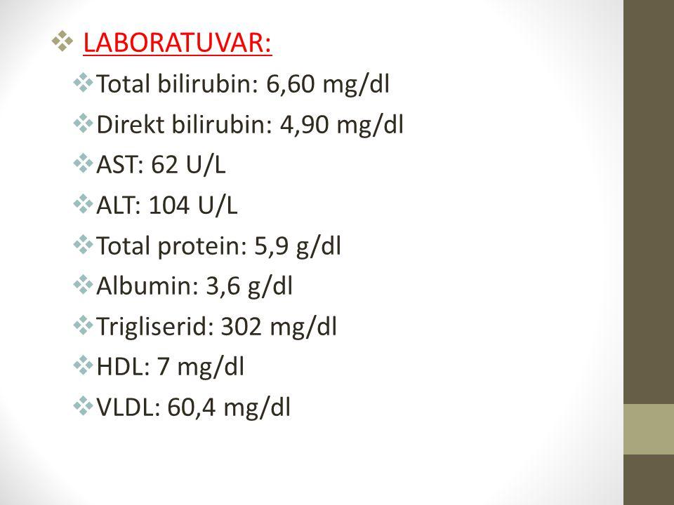  LABORATUVAR:  Total bilirubin: 6,60 mg/dl  Direkt bilirubin: 4,90 mg/dl  AST: 62 U/L  ALT: 104 U/L  Total protein: 5,9 g/dl  Albumin: 3,6 g/dl
