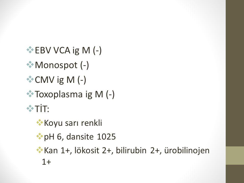  EBV VCA ig M (-)  Monospot (-)  CMV ig M (-)  Toxoplasma ig M (-)  TİT:  Koyu sarı renkli  pH 6, dansite 1025  Kan 1+, lökosit 2+, bilirubin