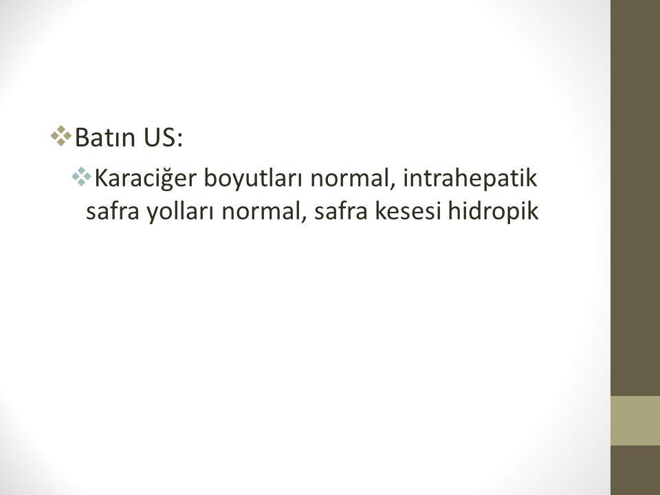  Batın US:  Karaciğer boyutları normal, intrahepatik safra yolları normal, safra kesesi hidropik