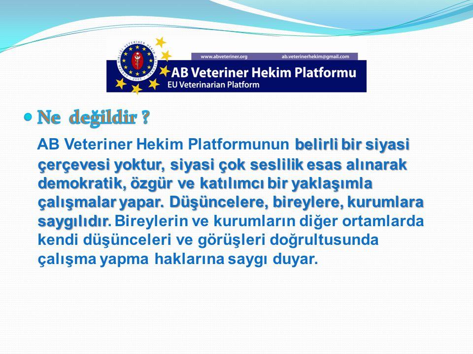 Meslek Odaları ve örgütlerine AB Platform, Meslek Odaları ve örgütlerine alternatif olarak kurulmamıştır alternatif olarak kurulmamıştır.