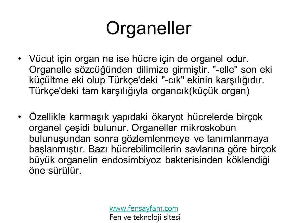 Organeller Vücut için organ ne ise hücre için de organel odur. Organelle sözcüğünden dilimize girmiştir.