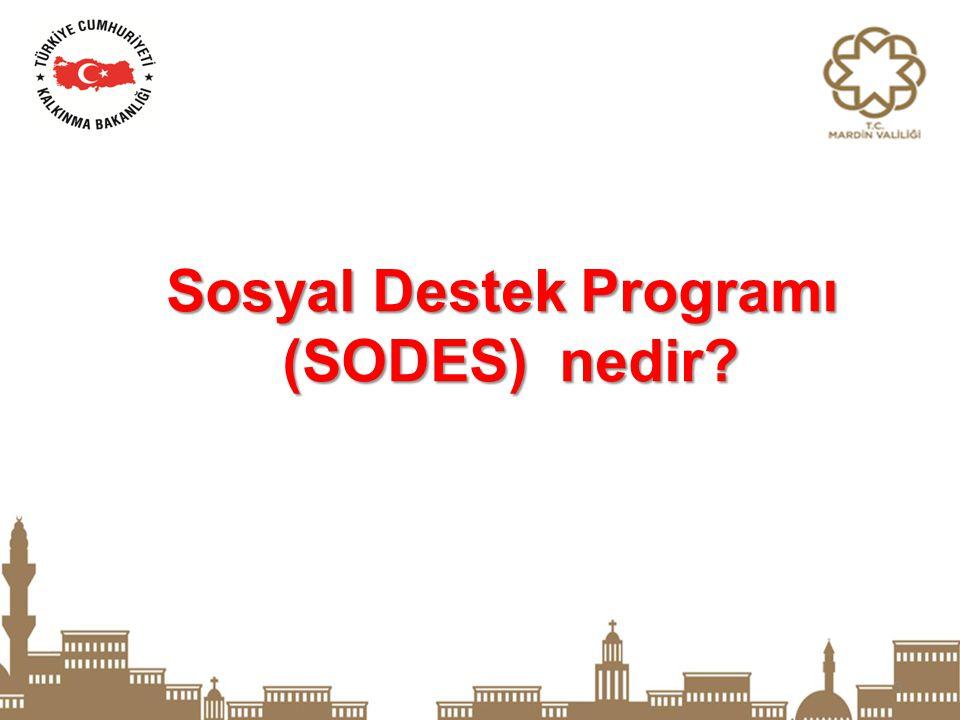 3 Sosyal Destek Programı (SODES) nedir? (SODES) nedir?