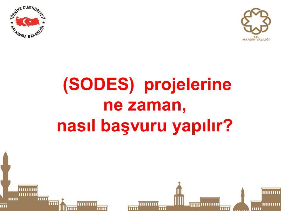 27 Faaliyet içermeyen ve ağırlıklı olarak tadilat, tefrişat ve demirbaş alımında oluşan projeler SODES kapsamında desteklenmeyecektir.