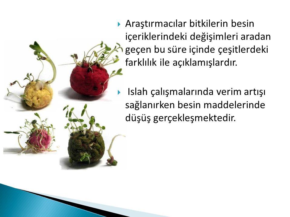  Araştırmacılar bitkilerin besin içeriklerindeki değişimleri aradan geçen bu süre içinde çeşitlerdeki farklılık ile açıklamışlardır.  Islah çalışmal