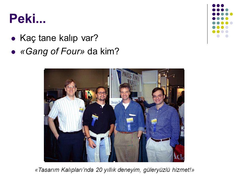 Kaç tane kalıp var.«Gang of Four» da kim.