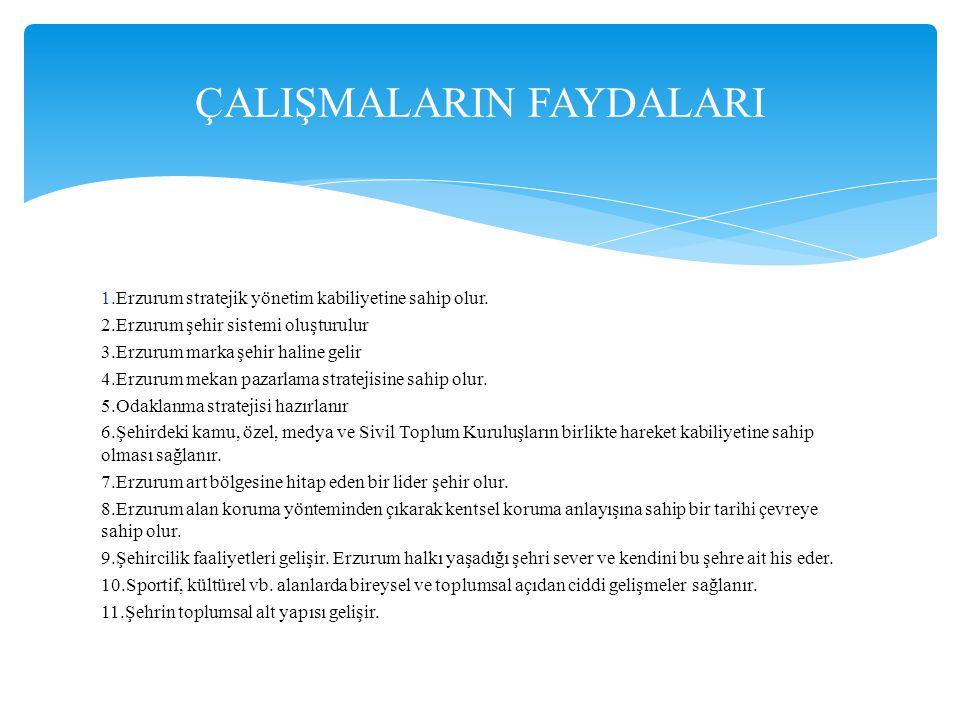 1.Erzurum stratejik yönetim kabiliyetine sahip olur. 2.Erzurum şehir sistemi oluşturulur 3.Erzurum marka şehir haline gelir 4.Erzurum mekan pazarlama
