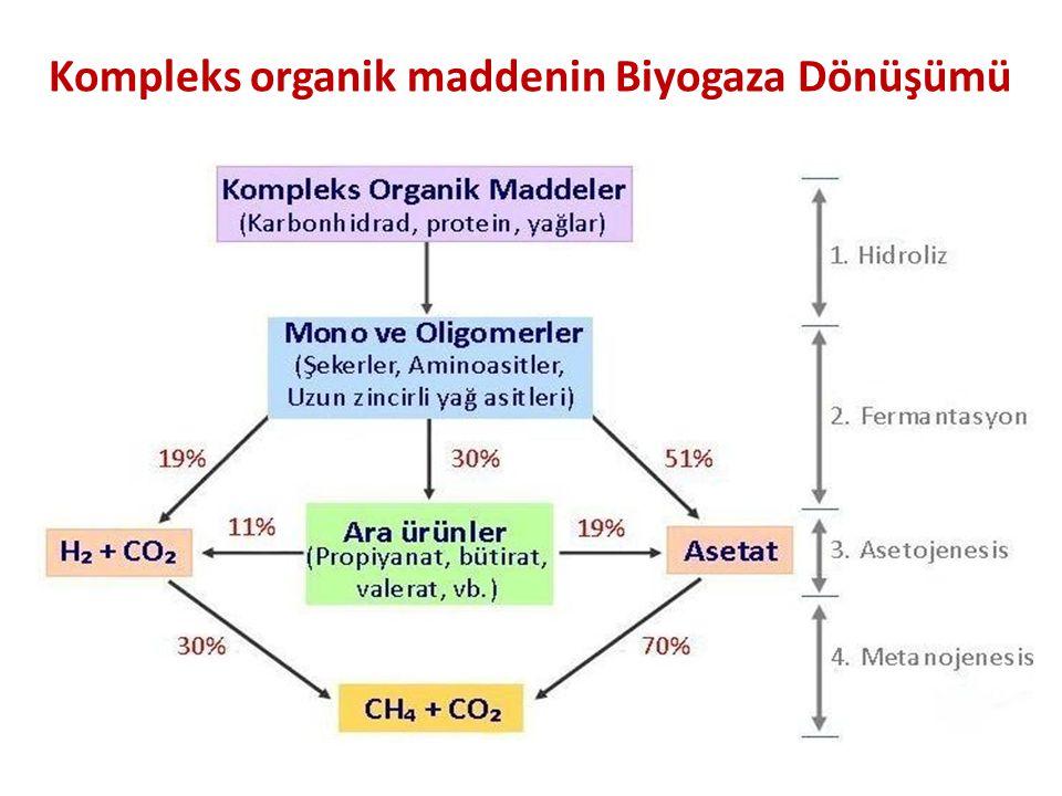 Kompleks organik maddenin Biyogaza Dönüşümü