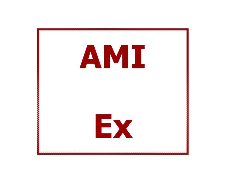 AMI Ex