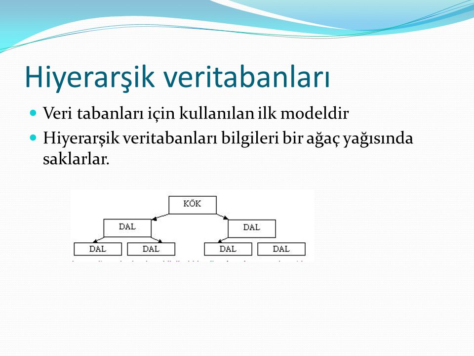 Hiyerarşik veritabanları Veri tabanları için kullanılan ilk modeldir Hiyerarşik veritabanları bilgileri bir ağaç yağısında saklarlar.