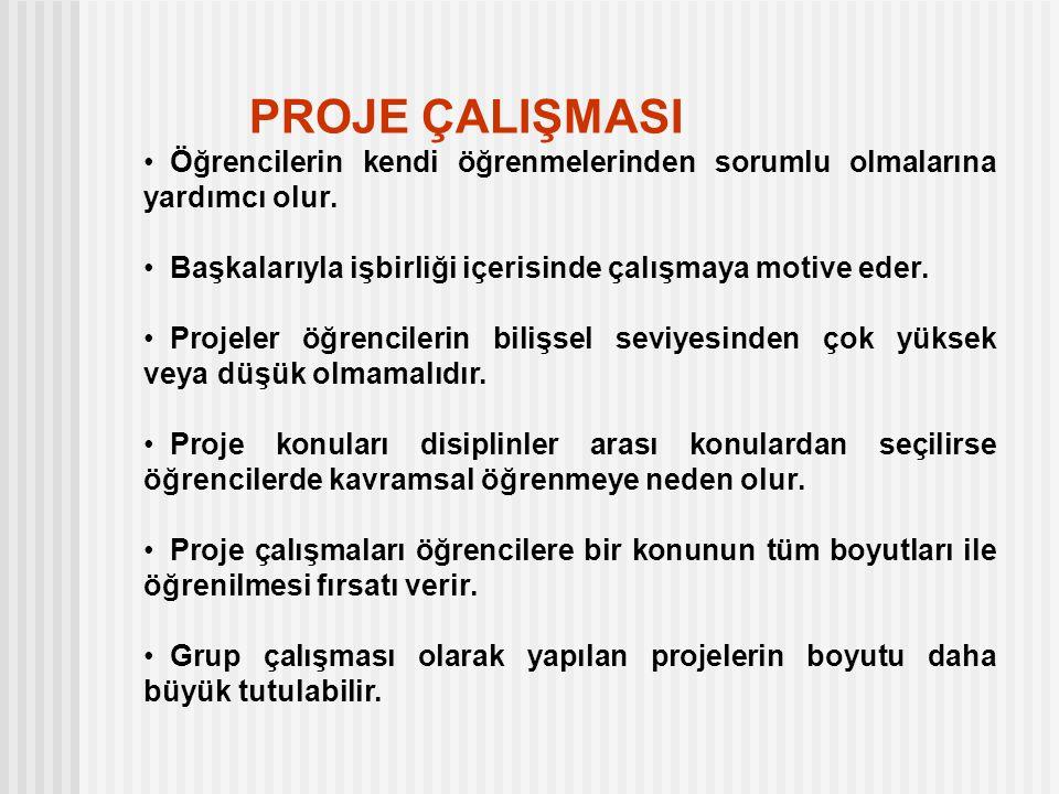 İKİ TÜRLÜ PROJE ÇALIŞMASI A- Tüm Lise 2 Fen- Mat grubu öğrencilerinin yaptığı proje çalışması.