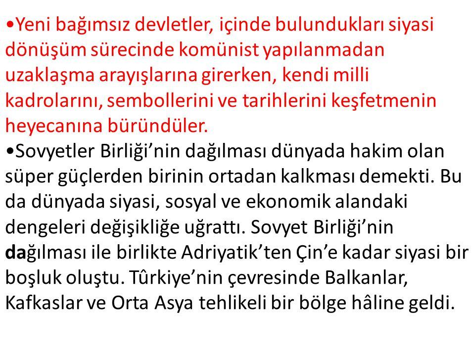 Türkiye bağımsızlığına kavuşmuş ve henüz ne yapacağına karar vermemiş, zayıf ve güçsüz kuzey komşularıyla olduğu kadar Orta Asya'daki Türk devletleriyle de ilgilemek durumunda kalmıştır.