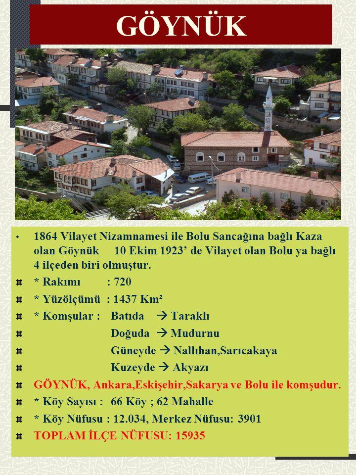 GÖYNÜK Göynük, Türkiye'nin nadide ilçelerinden biri... Roma, Bizans ve Anadolu tarihi ile iç içe olan bir ilçemiz. Kültürü, tarihi, tabiatı, maneviyat