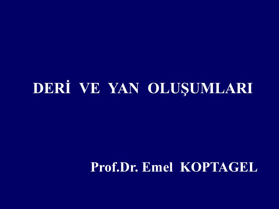 EPİDERMİS (STR:SPİNOSUM )