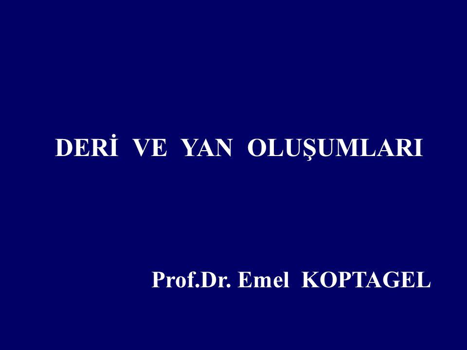 DERİ VE YAN OLUŞUMLARI Prof.Dr. Emel KOPTAGEL