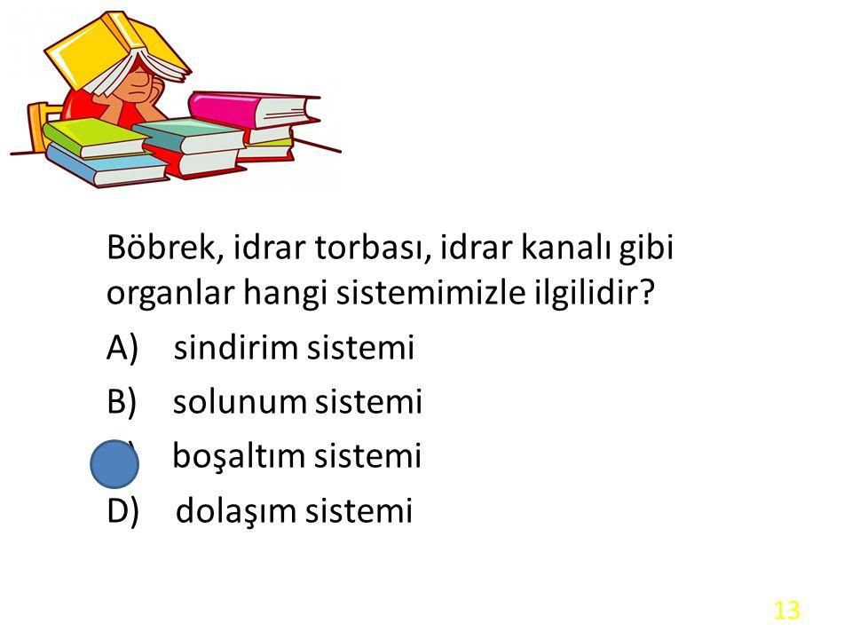 Böbrek, idrar torbası, idrar kanalı gibi organlar hangi sistemimizle ilgilidir? A) sindirim sistemi B) solunum sistemi C) boşaltım sistemi D) dolaşım