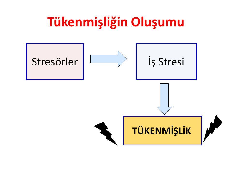Tükenmişliğin Oluşumu Stresörlerİş Stresi TÜKENMİŞLİK