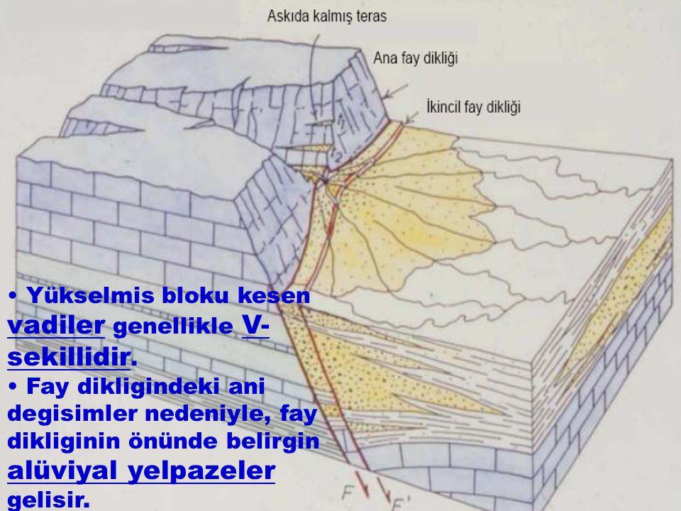 Yükselmis bloku kesen vadiler genellikle V- sekillidir. Fay dikligindeki ani degisimler nedeniyle, fay dikliginin önünde belirgin alüviyal yelpazeler