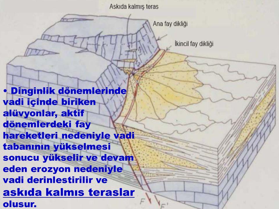 Dinginlik dönemlerinde vadi içinde biriken alüvyonlar, aktif dönemlerdeki fay hareketleri nedeniyle vadi tabanının yükselmesi sonucu yükselir ve devam