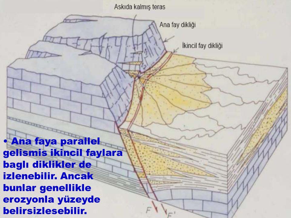 Ana faya parallel gelismis ikincil faylara baglı diklikler de izlenebilir. Ancak bunlar genellikle erozyonla yüzeyde belirsizlesebilir.