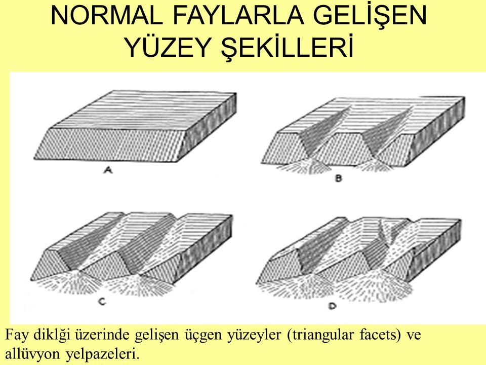 Fay diklği üzerinde gelişen üçgen yüzeyler (triangular facets) ve allüvyon yelpazeleri. NORMAL FAYLARLA GELİŞEN YÜZEY ŞEKİLLERİ