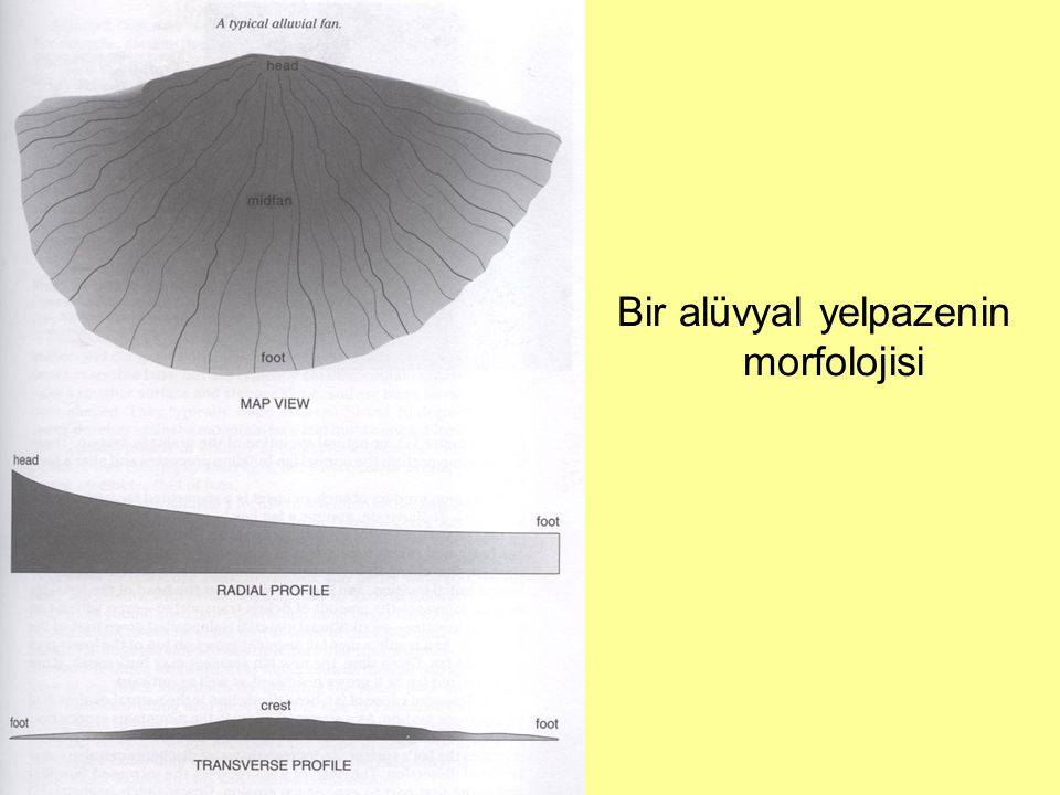 Bir alüvyal yelpazenin morfolojisi