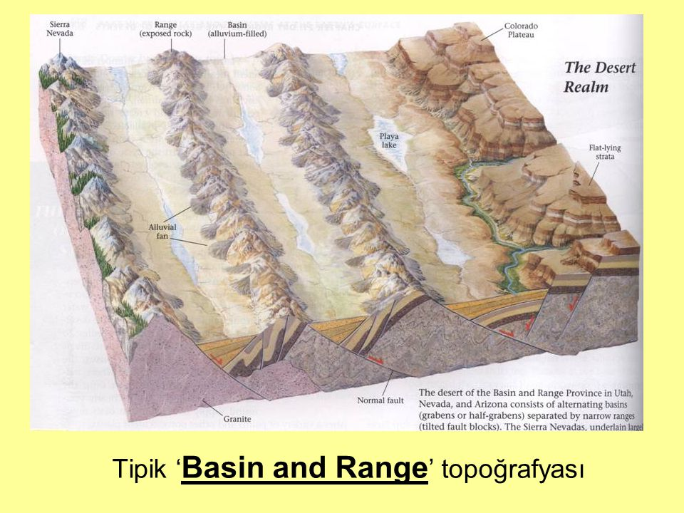 Tipik ' Basin and Range ' topoğrafyası