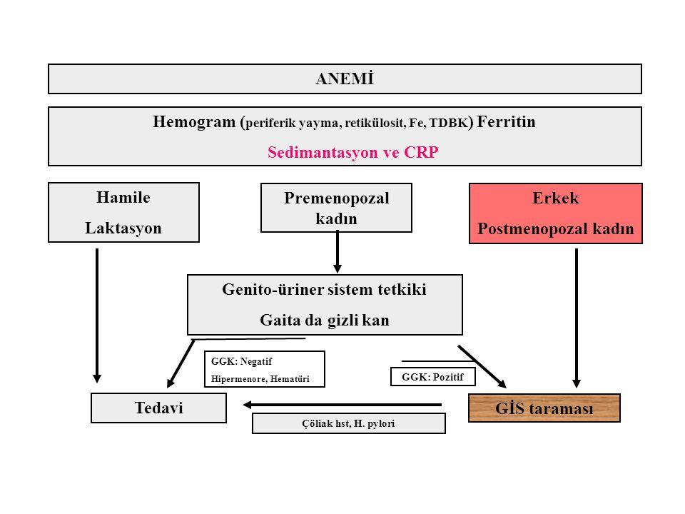 Hemogram ( periferik yayma, retikülosit, Fe, TDBK ) Ferritin Sedimantasyon ve CRP ANEMİ Hamile Laktasyon Premenopozal kadın Erkek Postmenopozal kadın