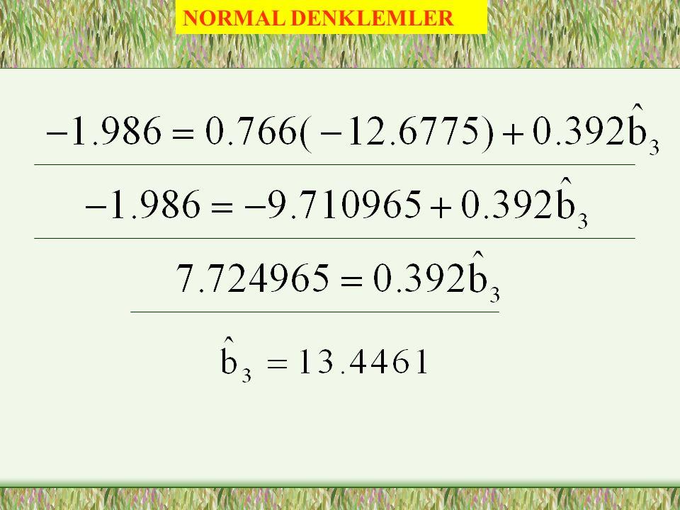 NORMAL DENKLEMLER 0.392 / -0.229 /