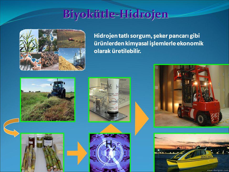 Biyokütle-Hidrojen Hidrojen tatlı sorgum, şeker pancarı gibi ürünlerden kimyasal işlemlerle ekonomik olarak üretilebilir. H2H2