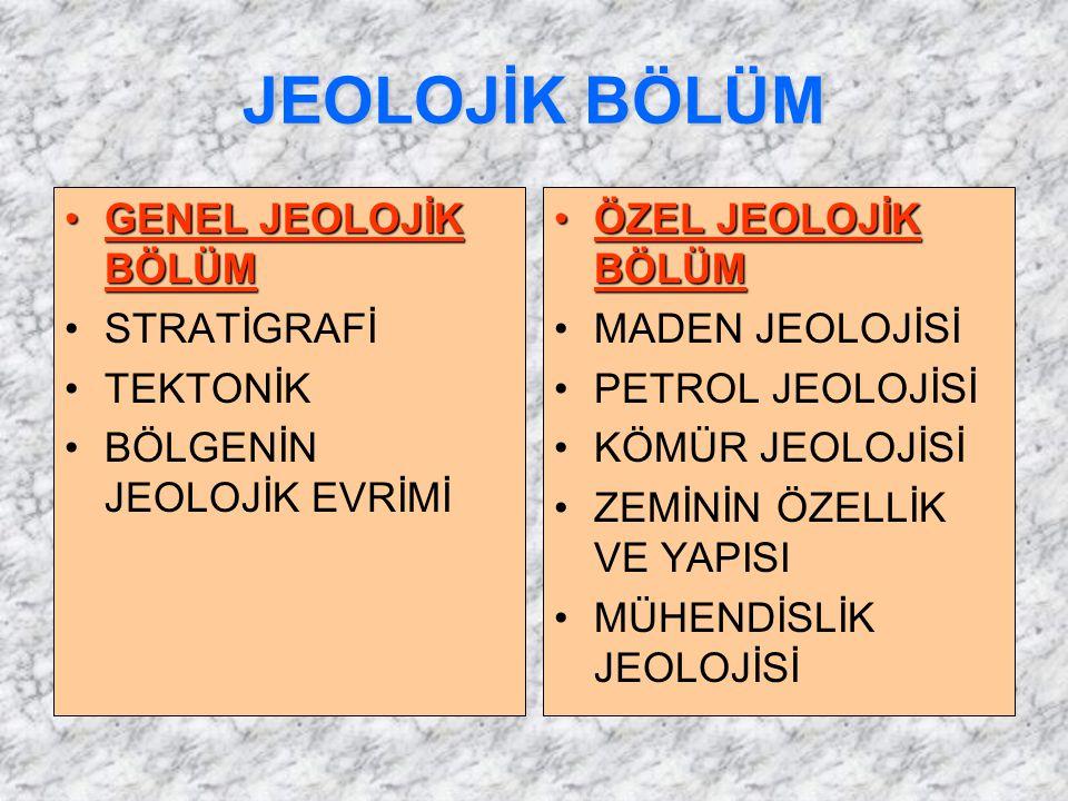 JEOLOJİK BÖLÜM GENEL JEOLOJİK BÖLÜMGENEL JEOLOJİK BÖLÜM STRATİGRAFİ TEKTONİK BÖLGENİN JEOLOJİK EVRİMİ ÖZEL JEOLOJİK BÖLÜMÖZEL JEOLOJİK BÖLÜM MADEN JEO
